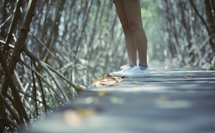 Low Section Real People One Person Human Leg Selective Focus Human Body Part Body Part Lifestyles Standing Nature Women Sport Tree Leisure Activity Unrecognizable Person Land Plant Outdoors