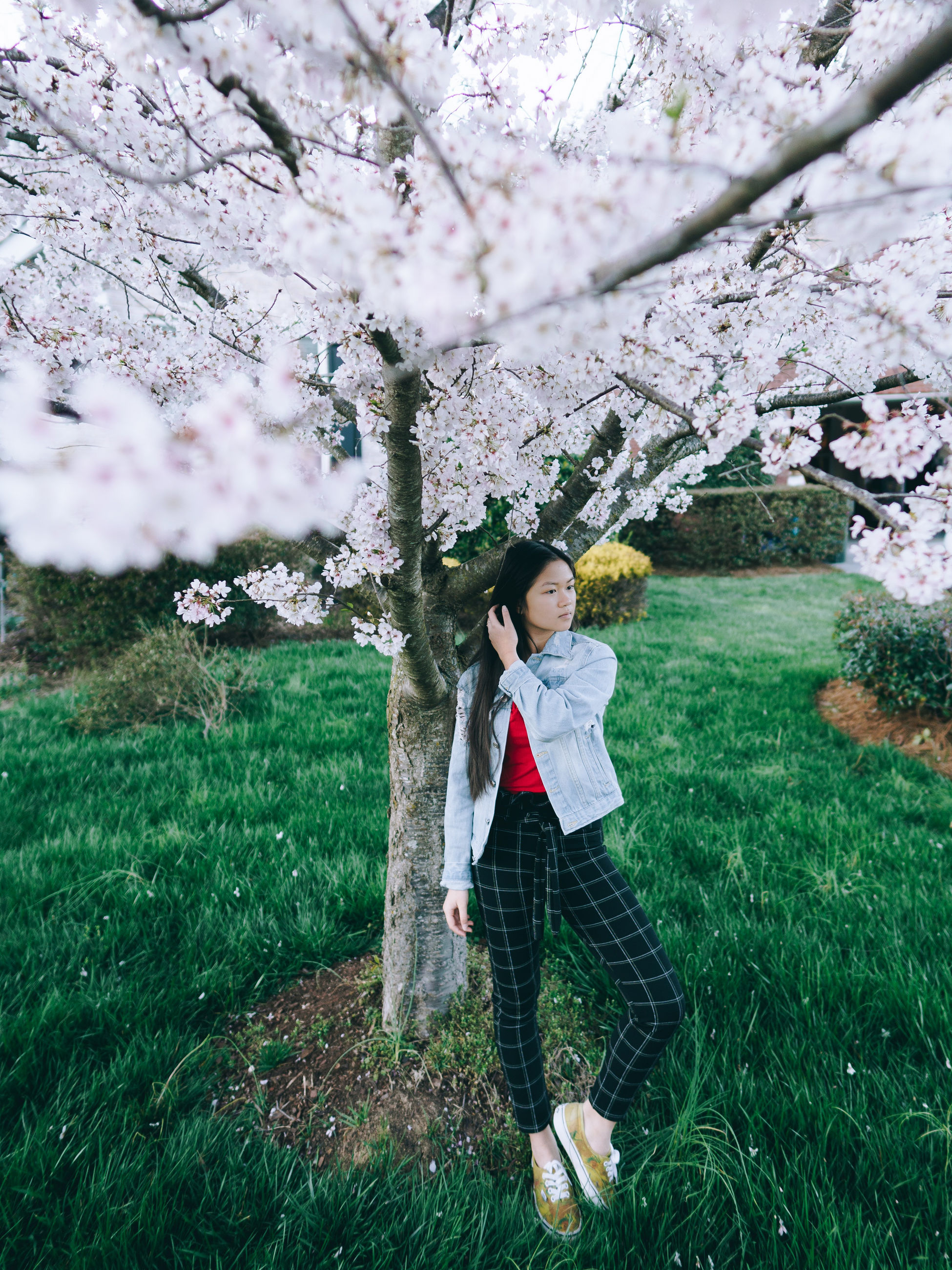 plant, tree, one person, growth, standing, real people, leisure activity, nature, casual clothing, flower, beauty in nature, lifestyles, grass, day, full length, flowering plant, young adult, land, springtime, blossom, cherry blossom, cherry tree, outdoors, hairstyle