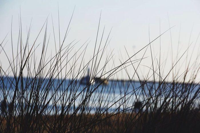 Beach Beachphotography Zinnowitz LVC