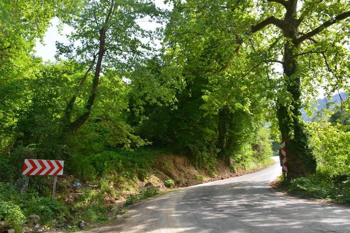 Yenisehir Yeşillik Yeşil Sensizlik Nikon D7100 Nikon Traveling Travel Relaxing Bursa