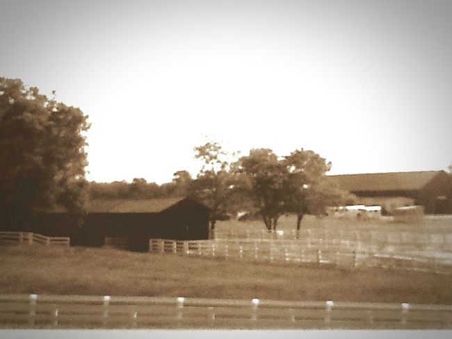 Kentucky  Fences Barns My Point Of View Black And White Road Trip Bluegrass State