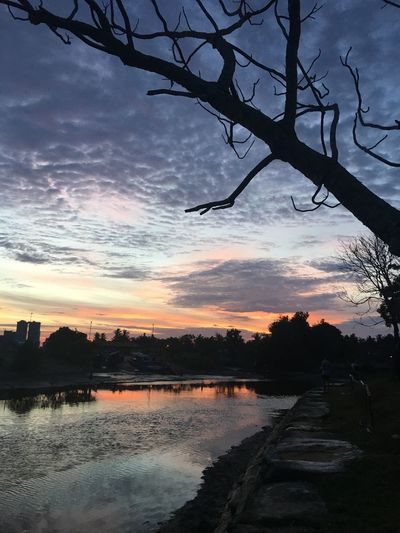 Bare Tree Beauty In Nature Branch Cloud - Sky Day Landscape Nature No People Outdoors Reflection River Scenics Silhouette Sky Sunset Tranquil Scene Tranquility Tree Water