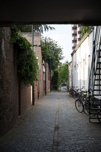 Alley Architecture Bicycle Brick Building Building Exterior Built Structure City Day Direction Footpath House Land Vehicle Mode Of Transportation No People Outdoors Plant Residential District Street The Way Forward Transportation Wall