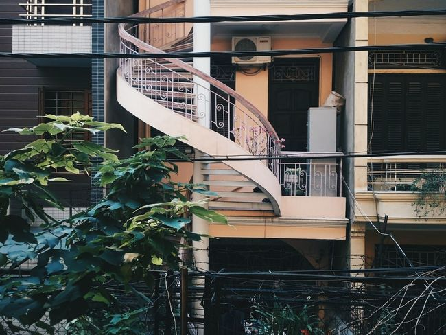 Building Exterior Architecture Built Structure No People Outdoors Day Color Of Life! Lovely Hanoi Vietnam  Tree Nature Springtime Sunlight Vietnam Lifestyles Architecture Photography Plant