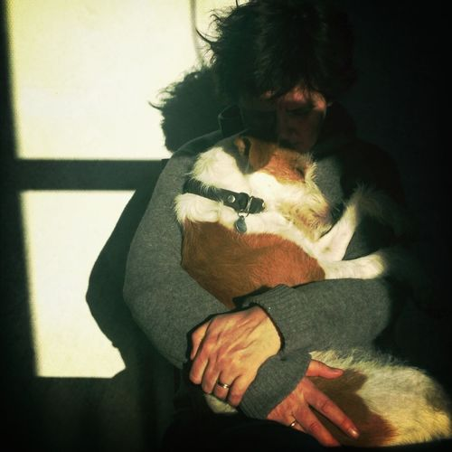 Dog Enjoying Life Kromfohrlander Heartbeat Moments