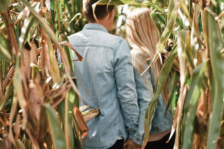 Couple holding hands while standing amidst plants
