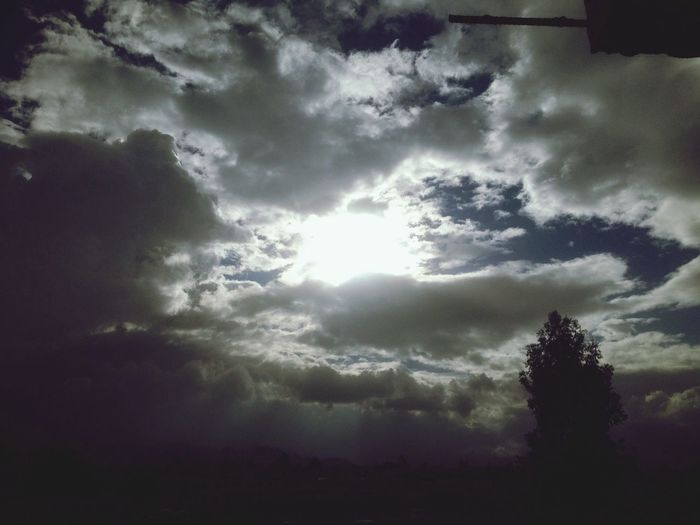 Temblor Skies Blue Sky Grow