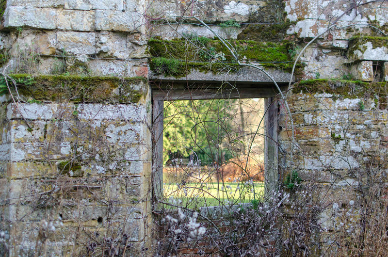 Part of the ruins of Scotney Castle, Lmaberhurst, Kent Kent Scotney Scotney Castle Scotney Castle, Kent UK. South East England Abandoned Architecture Bad Condition Building Exterior Built Structure Close-up Damaged Day Garden Of England Lamberhurst Nature No People Old Ruin Outdoors Plant Rotting Rural Scene Tree Weathered Window