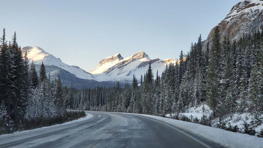 Road amidst trees and snowcapped mountains against sky