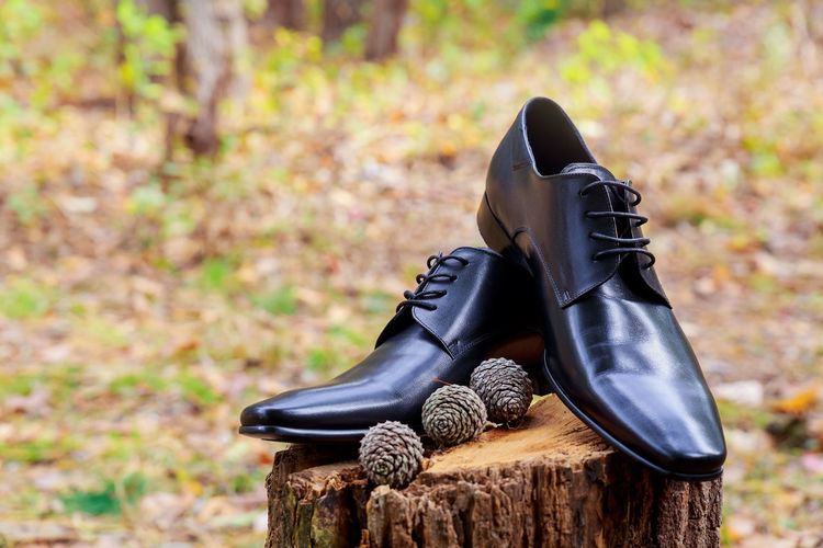 Shoes on tree stump over field