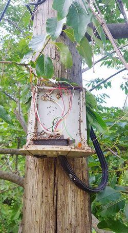 Hatlarda karıncalanmalar var :p Soundcloud.com/smtzs Smtzs