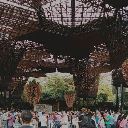 El orquídeorama del jardín botánico de la ciudad de Medellín mejor conocida como la ciudad de las orquídeas. Jardinbotanico Medellín Colombia Orquideologia architecture espacioescultorico espaciopublico
