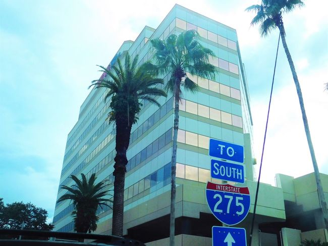 Office building in paradise (aka Florida)! Architecture Building Exterior Building Story Built Structure Business City Communication Development Downtown Growth Information Sign Low Angle View Modern Office Building On The Road Outdoors Palm Tree Road Sign Sky Skyscraper Tall - High Tampa Text The Color Of Business Dramatic Angles