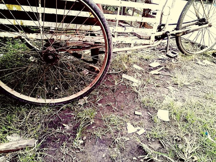 Sepeda Rusty Gerobak Ride Old Backgrounds Full Frame Pattern Close-up Circle Spiral Stairs Big Wheel Tree Ring