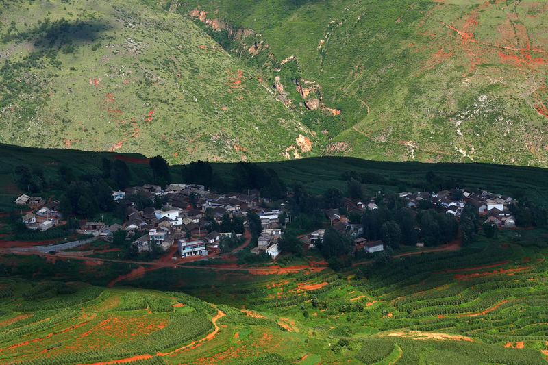 Colorful farmland with village on red dirt with mountains in dongchuan at Kunming in Yunnan, Chinachina Landscape Plant Environment Nature Beauty In Nature Land Tree Day Scenics - Nature No People Green Color Growth Tranquil Scene Field Tranquility High Angle View Rural Scene Architecture Outdoors Agriculture China Village