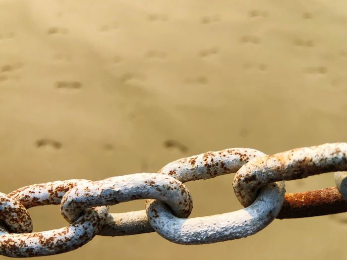 Close-up of rusty chain at beach