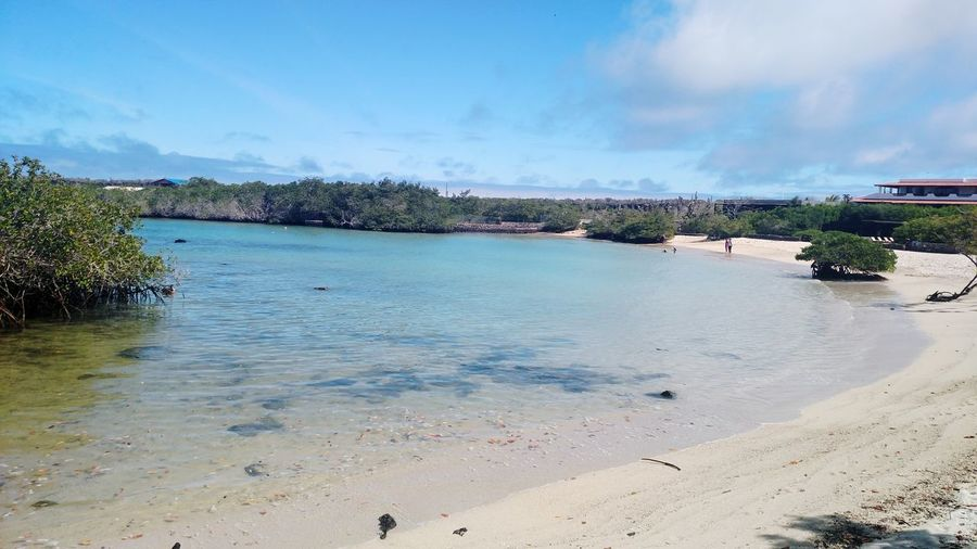 Las Fritas Beach Beach Beach Sand Sea Water Vacations Sky Summer