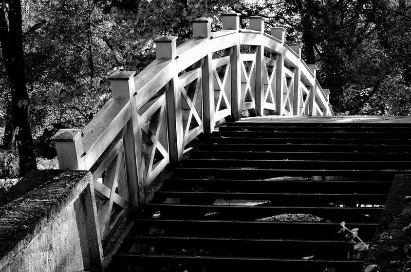 Staircase of bridge in forest