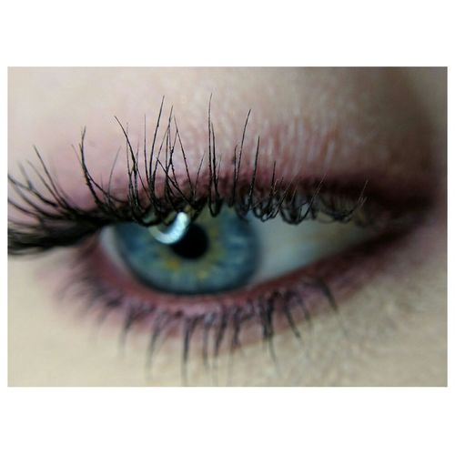 Macro Macro Photography Makeup Makeup ♥ Makeup Art Makeupphotography Whiteborder Pink Eyelashes Human Eye Eyelash Beauty Close-up Eyeball Iris - Eye Eyesight Only Women