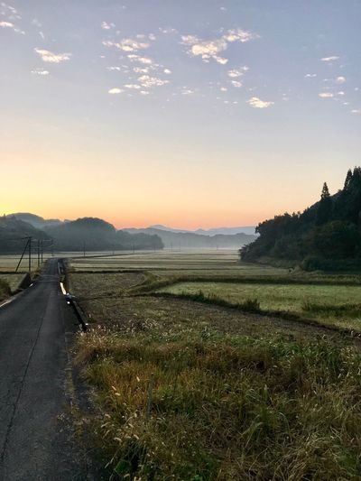 Autumn In The Country Road Grass The Way Forward Landscape Nature Mountain Tranquil Scene Scenics Sky Beauty In Nature Tranquility Outdoors Transportation Field No People Day Mountain Range Sunset Sunrise Imari Japan