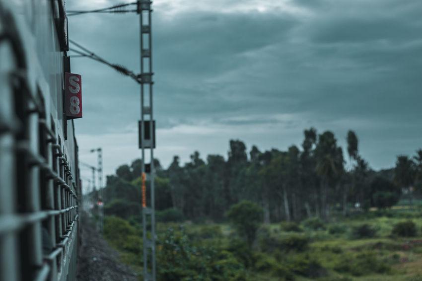 The train journey... Green Monsoon Rain Adventure Cloud - Sky Day Field Focus On Foreground Journey Karnataka Land Looking Through Window Mysore Nature No People Number Outdoors Overcast Plant Selective Focus Sky Train Transportation Tree The Traveler - 2018 EyeEm Awards The Great Outdoors - 2018 EyeEm Awards
