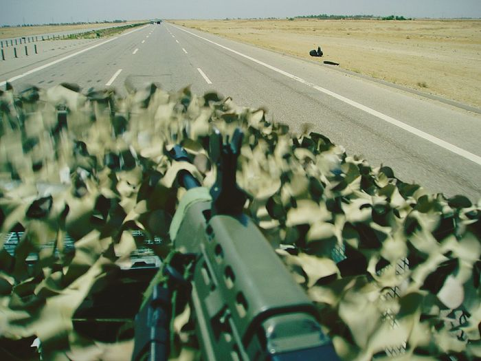 Close-up of rifle amidst leaves on road
