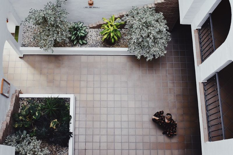 Dress Women Spinning Around Dancing Plant Growth Architecture Built Structure Potted Plant Nature Day Building Exterior Building Wall - Building Feature Tile Flooring High Angle View Residential District Front Or Back Yard Sunlight International Women's Day 2019