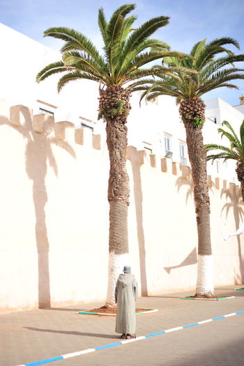 Rear view of woman standing by palm tree against sky