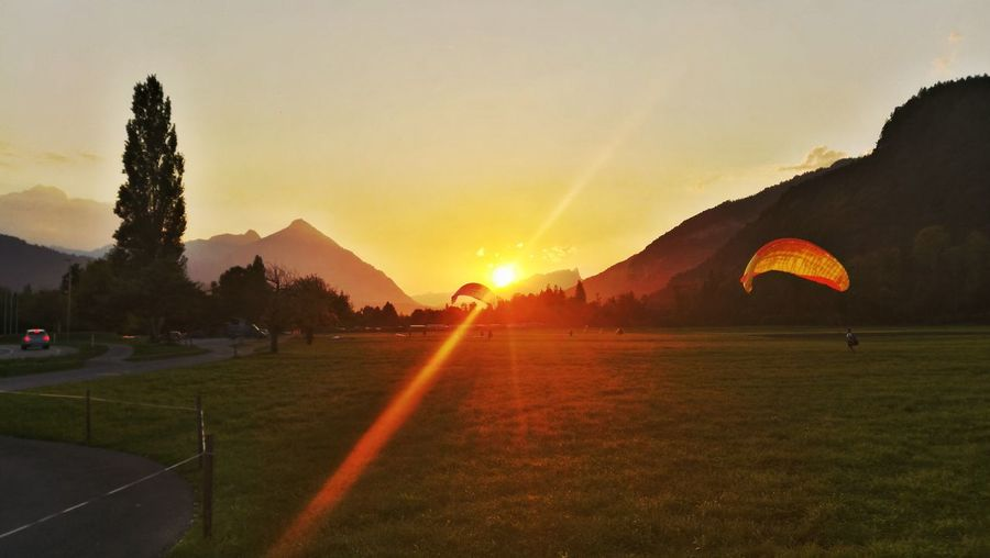 Bernese Oberland Switzerland Sunlight Eye4photography  Berner Oberland Interlaken Niesen EyeEm Selects Paragliding Tree Sunset Sky Grass Sun Sunbeam