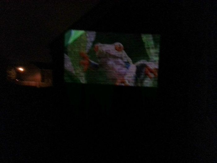 What better to do at 3am than hang out the window and try your new projector on next doors wall :)