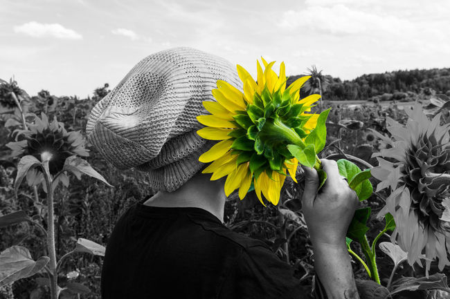 Woman with beanie with sunflower Music Blooming Cellphone Field Flower Flower Head Fragility Freshness Hearing Hold The Line Leaf Lifestyles Mobile Nature One Person Petal Plant Real People Rear View Sky Sunflower Talking Telephone Women The Week On EyeEm Mix Yourself A Good Time