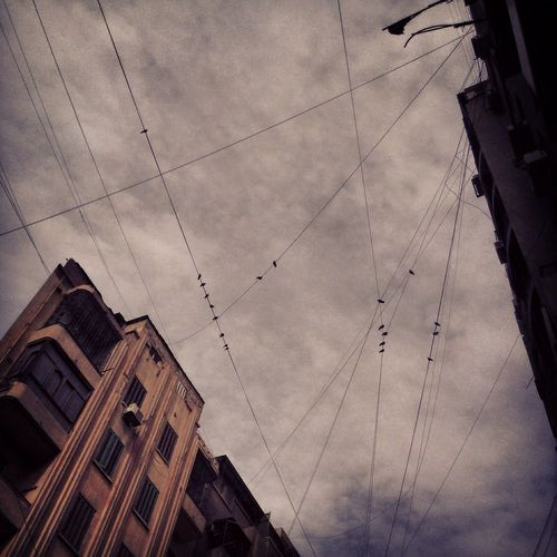 Birds Clouds And Sky Buldings Hesham Nassar Ph Mobilephotography