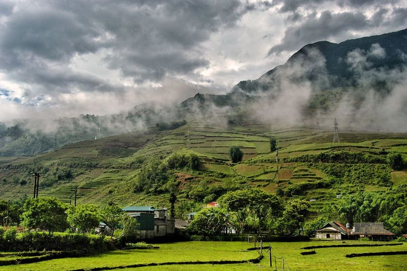 Vietnam SaPa Plant Cloud - Sky Landscape Tree Environment Growth Nature Field Land Sky Scenics - Nature Green Color Mountain No People Beauty In Nature Tranquility Rural Scene Agriculture Tranquil Scene Day