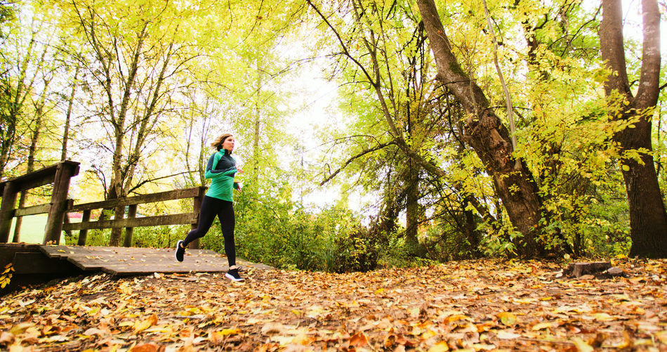 Adult Adults Only Autumn Change Day Exercising Forest Full Length Healthy Lifestyle Jogging Leaf Lifestyles Nature One Person One Woman Only Only Women Outdoors People Running Sport Sports Clothing Sports Training Tree Vitality Wellbeing