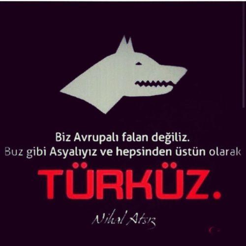 Türklüğün vicdanı bir, dini bir, vatanı bir.Fakat hepsi ayrılır, olmazsa lisanı bir...Ziya Gökâlp Asena Başbuğun Askeri