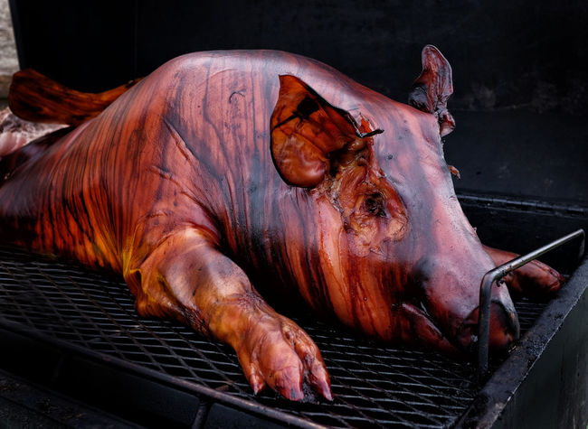 Oink Pig Roast Barbecue Close-up Domestic Animals Food Food And Drink Freshness Herbivorous Mammal Meat Metal No People One Animal Outdoors Pig Pig Roast Pork Roasted Vertebrate