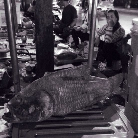 IPhoneography Black & White Street Photography Fish