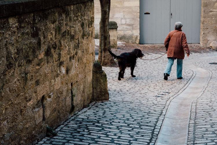 Rear View Of Senior Woman Walking