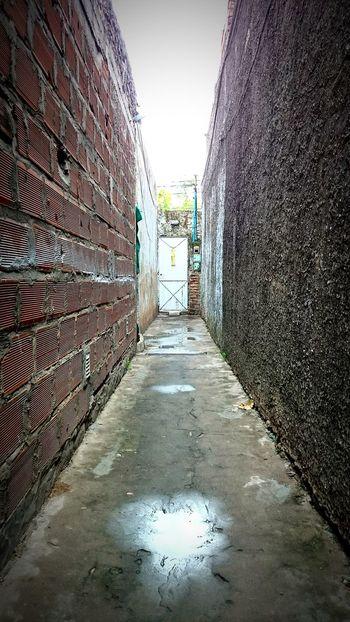 Doors Door Camino Puertas