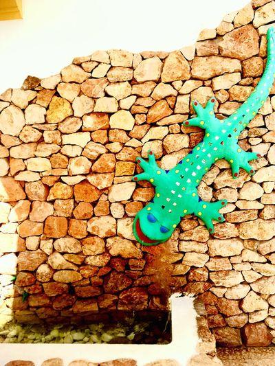 Colour Of Life Lizard Savina Formentera La Isla Bonita Green Color Fountain Summer