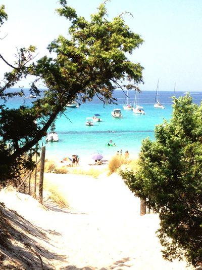 Vamos al playa Beach Corsica Hidden Places Enjoying Life Enjoying The Sun