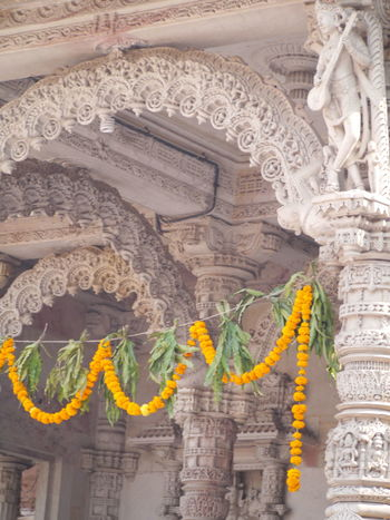 Day Flower Gujarat Gujarat India India Cultural New Year New Year Celebration No People Outdoors