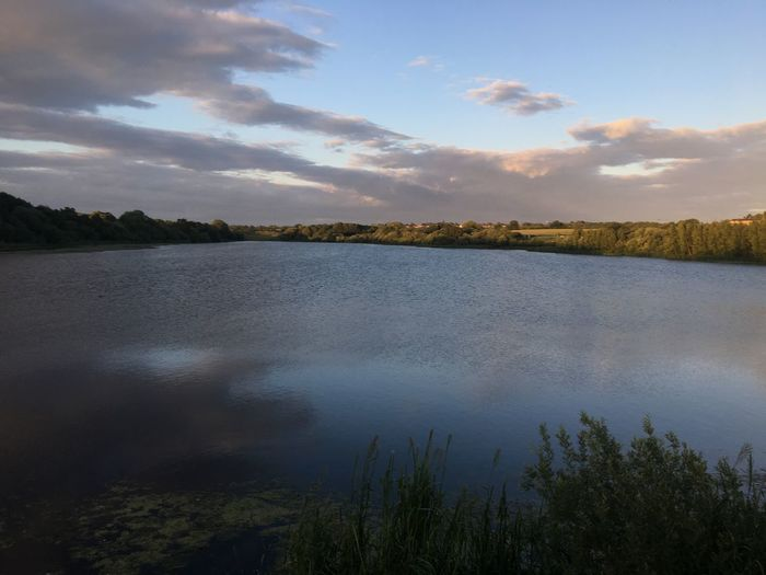Lush Lake Sky