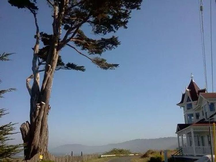 On a clear Westport California day in July 2011, I was curious about the distant mountains.