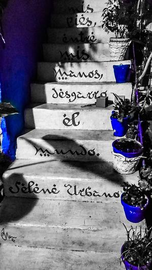 Patios De Córdoba Blue White Blancoynegro Night Communication Shadow Text
