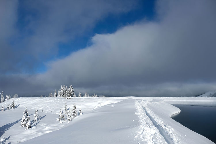 Backcountry skiing track in deep snow along the lake. snow covered christmas trees. sunny and clouds