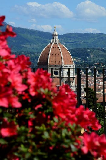 The Beautiful Cathedral of Santa Maria del Fiore in Florence as seen from Bardini Garden. Italy Azaleas In Bloom Bardini Garden Cathedral Cityscape Duomo Duomo Di Firenze Firenze Florence Cathedral Maria Red Santa Toscana Architecture Azalea Blossoming  Brunelleschi Fiore Florence Flower Flowers Italy Nature Sky