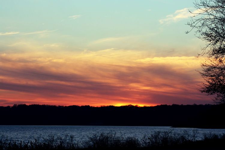 Sunset over Monroe Lake, Indiana Sky Sunset Scenics - Nature Cloud - Sky Beauty In Nature Tranquil Scene Tranquility Tree Plant Orange Color Silhouette Lake Nature No People Non-urban Scene Idyllic Water Environment Outdoors Romantic Sky
