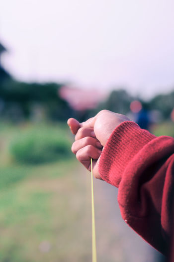 The hand of a kite