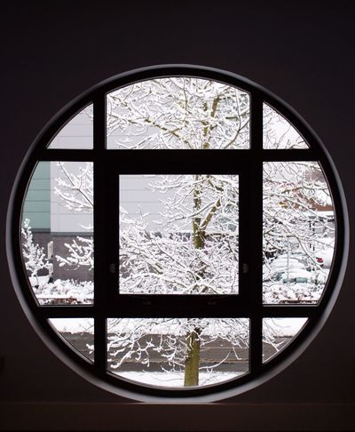 Snow Trees Looking Out Of The Window Frame Circle Round Window Frame Winter White Nature Beauty In Nature EyeEm Best Shots EyeEm EyeEm Gallery Branches Square TakeoverContrast Adapted To The City